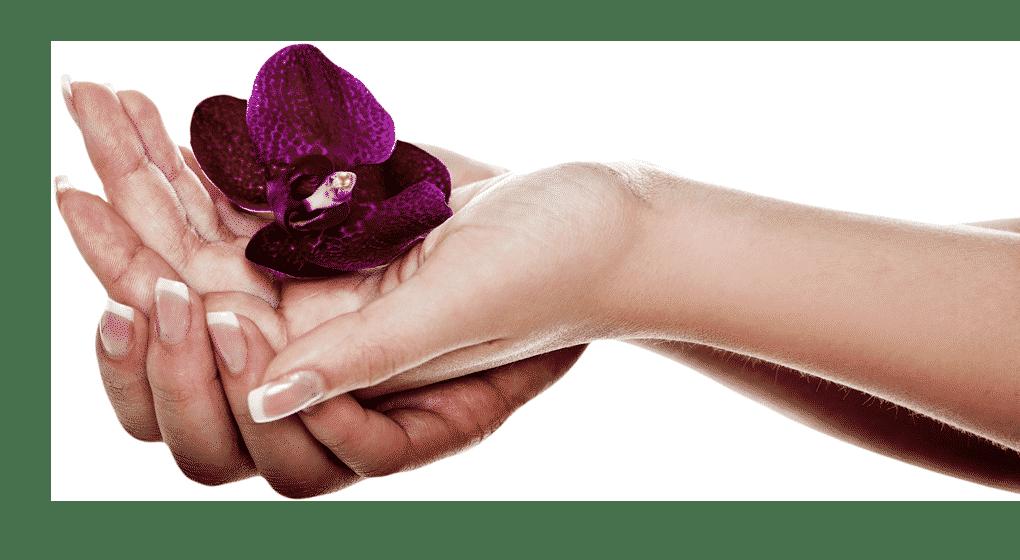Helene Kollroß - Heilende Hände